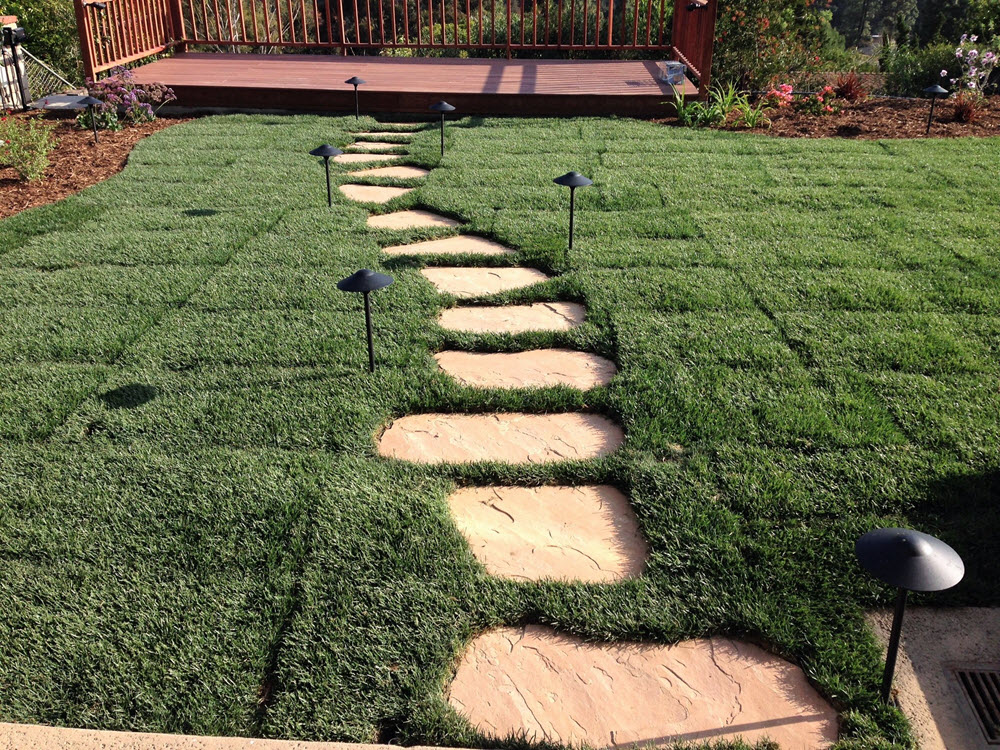 Ed's Landscaping Sod-naturals stone-deck