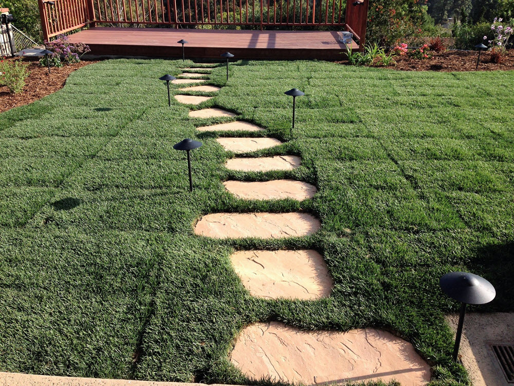 Ed's Landscaping Sod with stepping stones