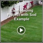 Ed's Landscaping Landscape with Sod Project in Pasadena, CA Videos